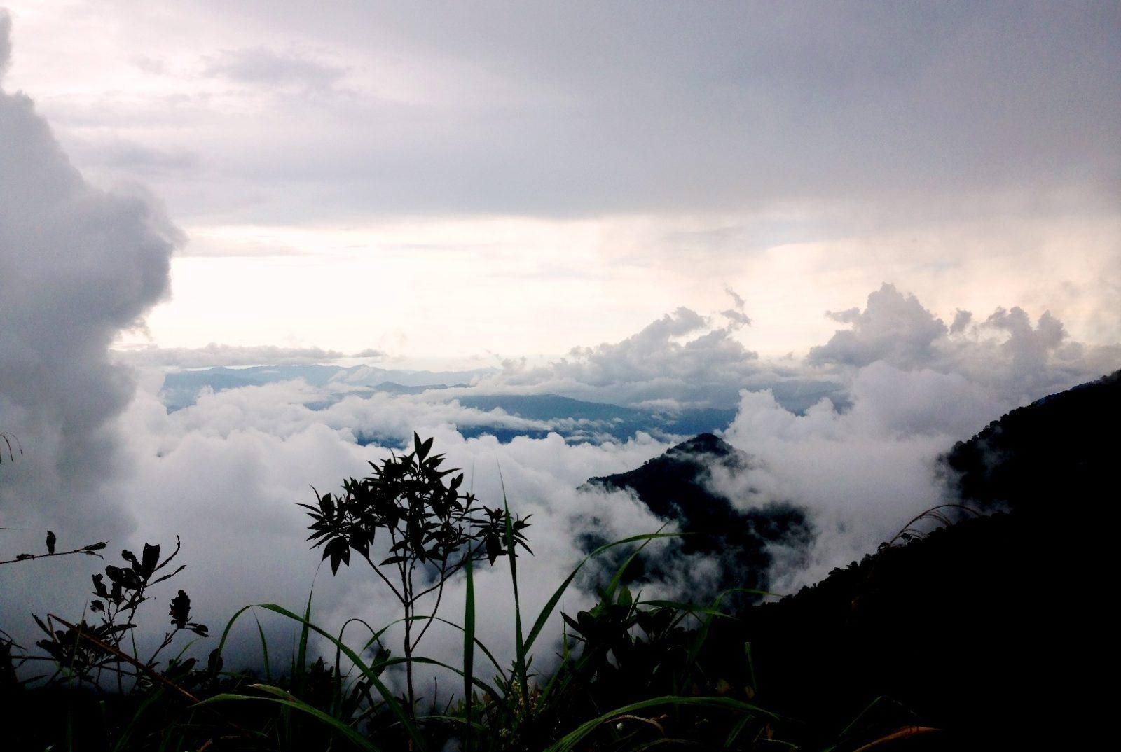 БОрнео Малайзия