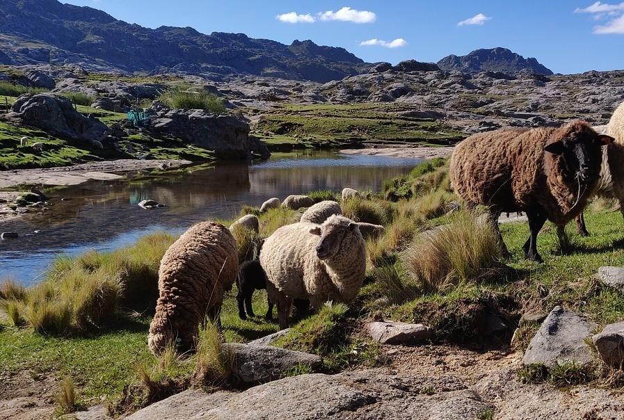 Лучшие места для пешего туризма в Аргентине
