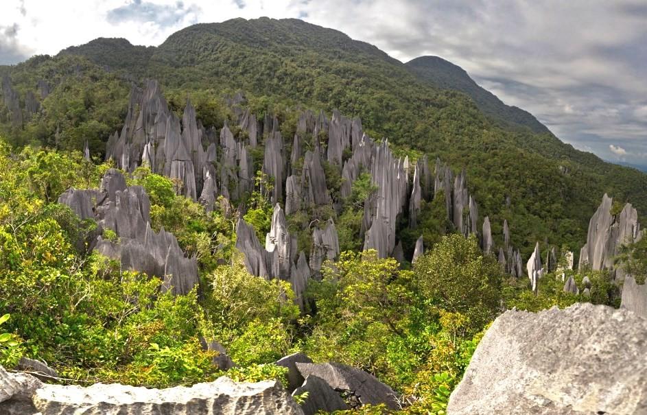 Парк Мулу Борнео