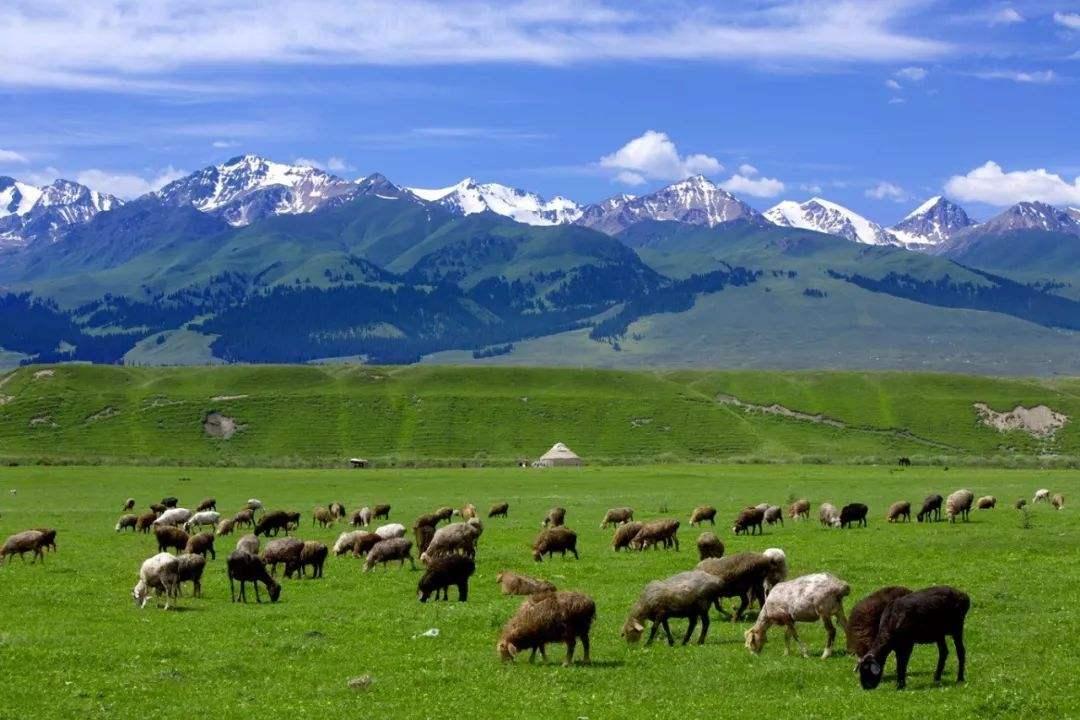 Синьцзян, Китай: неизвестная и величественная природа (достопримечательности)