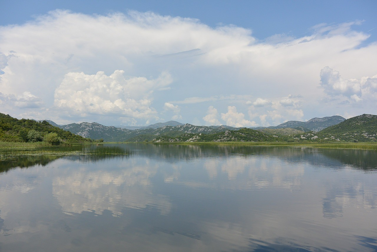 кадарское озеро черногория