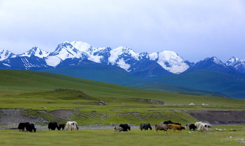 Неизвестная и величественная природа Синьцзяна, Китай