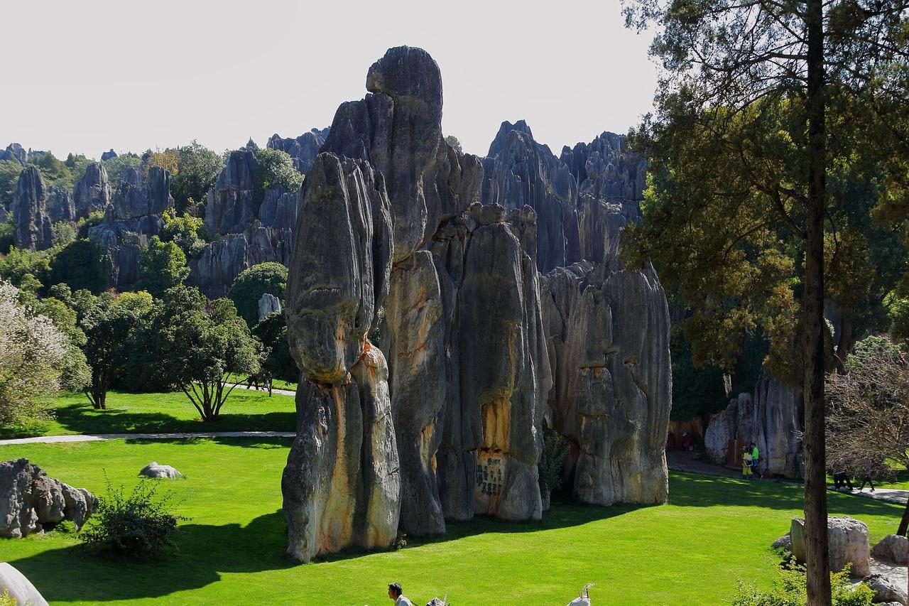 Каменный лес, Куньмин
