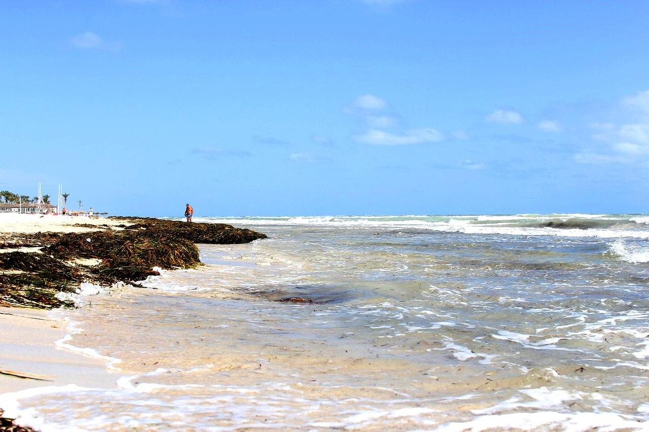 Остров Джерба Тунис, Дикий пляж