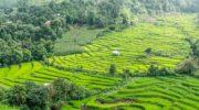 Куда поехать в Таиланде: идеи и направления