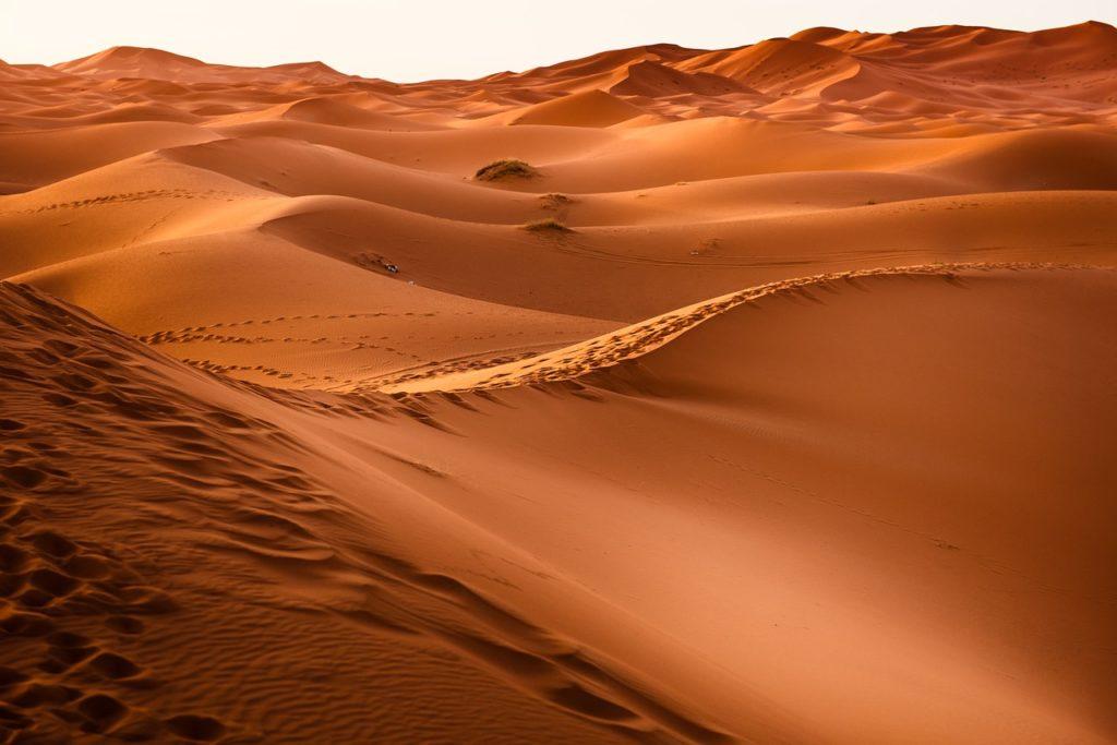 Дикая пустыня М'хамид, Марокко