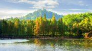 Самые яркие природные достопримечательности Гуанчжоу в провинции Гуандун, Китай