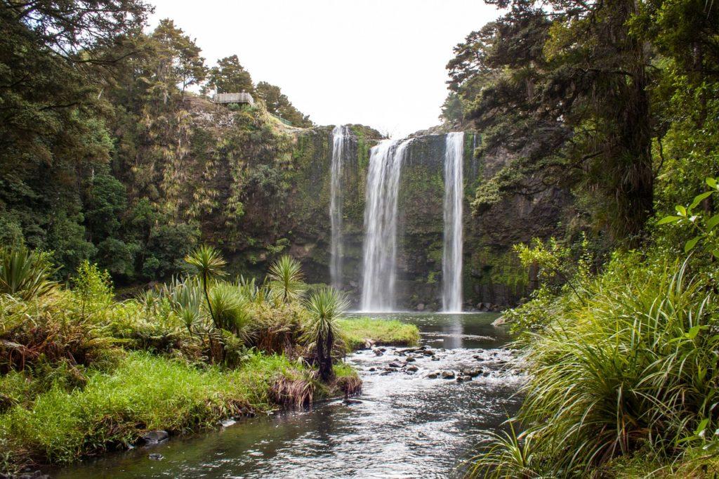 Вангара, Новая Зеландия