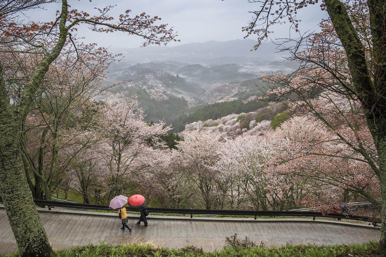 Префектура Нара, Япония