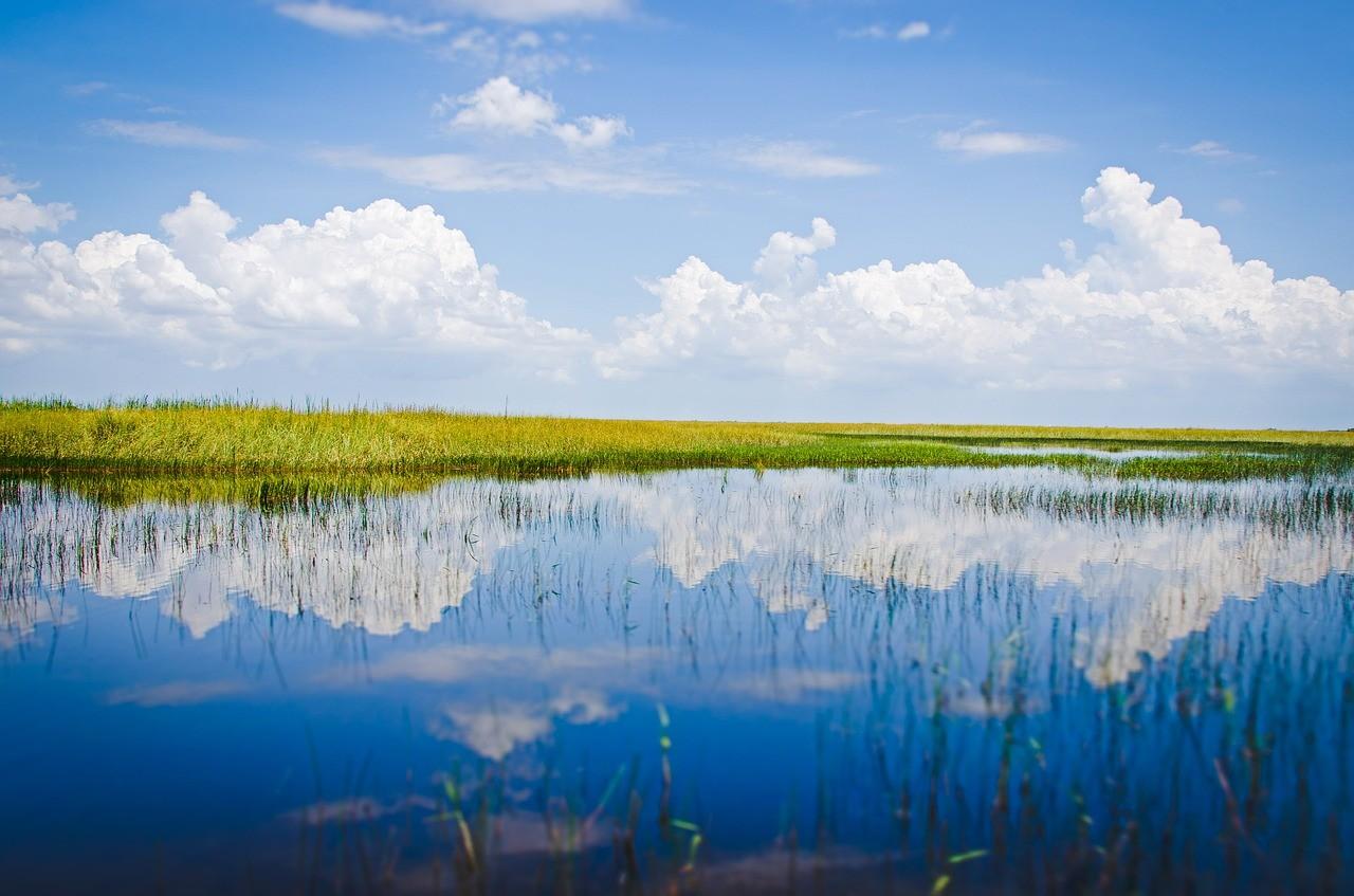 Национальный парк Эверглейдс, Флорида, США