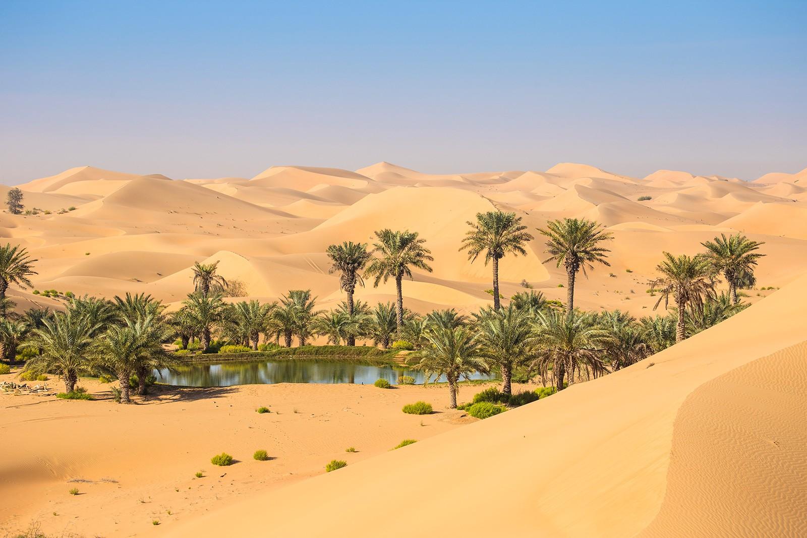Оазис Лива, Объединенные Арабские Эмираты