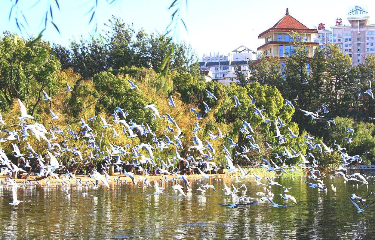 Озеро Цуйху, Куньмин, Китай