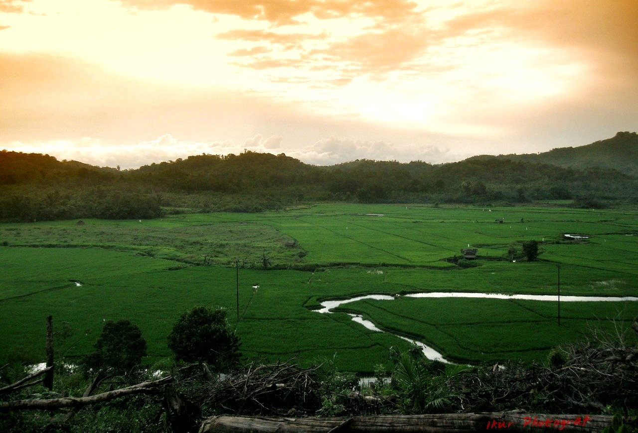 Калимантан, Индонезия